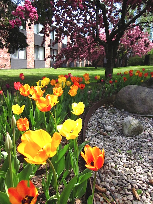 Spring at the Fireside Inn Portland